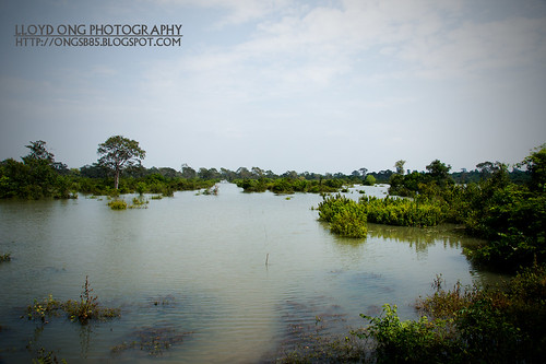 River of Preah Khan