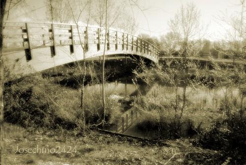 Al otro lado del puente.