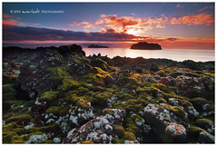 Lava Light (Dylan Toh) Tags: sea field rock sunrise landscape island photography dawn lava iceland stack dee volcanic vestmannaeyjar waterscape westman everlook