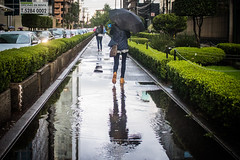 5 - Huyendo a casa bajo la lluuvia - 14Jun17 (oemilio16) Tags: cdmx ciudad de méxico lluvia rain raining canon umbrella paraguas sombrilla agua street calle streetphotography lloviendo t6 1300d kissx80 city df
