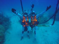 That's a wrap (europeanspaceagency) Tags: humanspaceflight imageoftheweek neemo nasa underwater florida aquarius exploration testing diving astronauts planetary