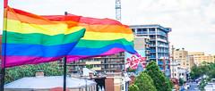 2017.07.02 Rainbow and US Flags Flying Washington, DC USA 6853