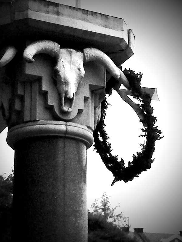 iPhoneography: Column