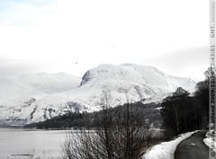 Winter hills 1/2