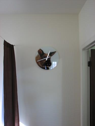 bunny clock on wall