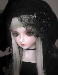 the black rose (ludyco) Tags: light flower rose dark liberty doll lace gothic goth silk bijoux velvet artnouveau sd bjd fiori dollfie superdollfie luts luce bambole organza pizzo balljointeddoll blanchet seniordelf doublejointeddoll
