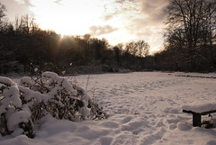 DTB-100109-4311 (David Bicknell) Tags: snow sheffield frozenlake rivelin