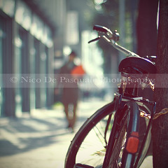 """Do not dwell in the past, do not dream of the future, concentrate the mind on the present moment."" (** Nico **) Tags: lighting street light sun man tree bicycle square raw dof bokeh gettyimages canonef50mmf14usm canoneos40d nicodepasquale"