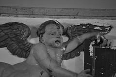 DSC_0335 (Eddie Garou) Tags: park angel cherub asbury