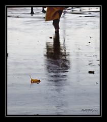 PASOS (pavon2007) Tags: parque españa lluvia coruña sandiego ciudad galicia reflejos caminante oscastros