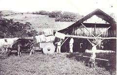 provincia 024 (flegisto) Tags: 1922 miralles albumdemiralles