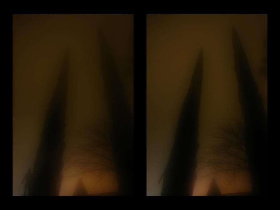 _Bats_and_Swallows_116