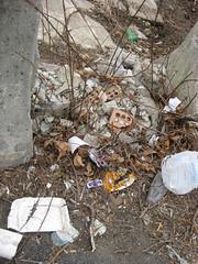 site visit (lauragothacked) Tags: school philadelphia planning ash sinking blight logantriangle