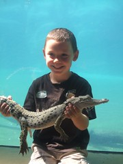 out and about in darwin  Mitchell holding croc
