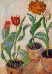 W 941 - Claude Monet: Three Pots of Tulips (1883) (petrus.agricola) Tags: daniel w monet impressionism claude catalogue 941 wildenstein raisonn