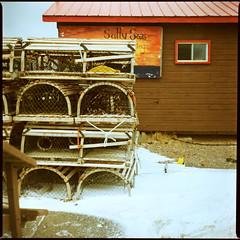SaltySeas (Jeremy Griffin) Tags: winter snow beach analog xpro crossprocessed fuji slide analogue boathouse pei lobstertraps scannednegative c41 brackleybeach redwindow crazycolors bronicas2a fujichromeprovia400xrxp saltyseas nikkorp75mm28 disgustingrebate
