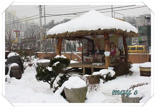 韓國之旅 495