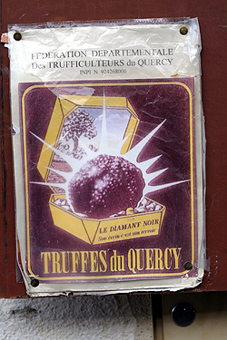 truffes du Quercy