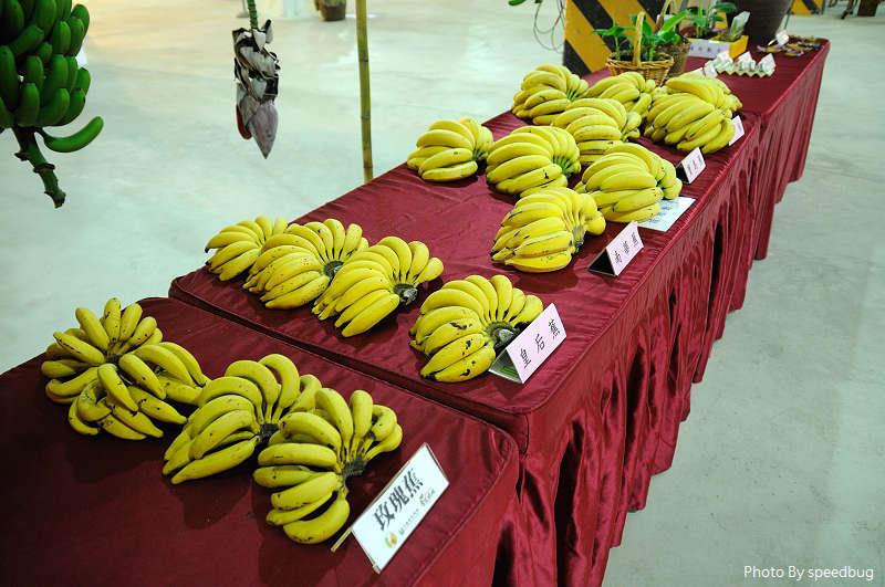 香蕉碼頭 (32).jpg