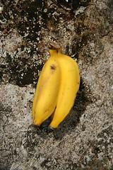 Hana Highway, Twin Bananas