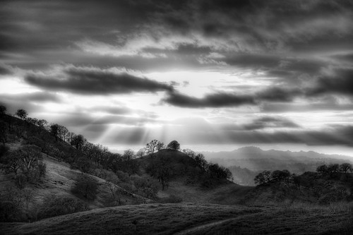 This is why I take photographs - B/W