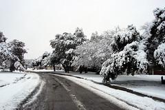 snowday.100211.02