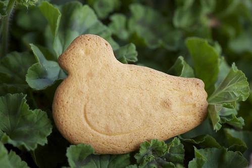 hato sablé cookie