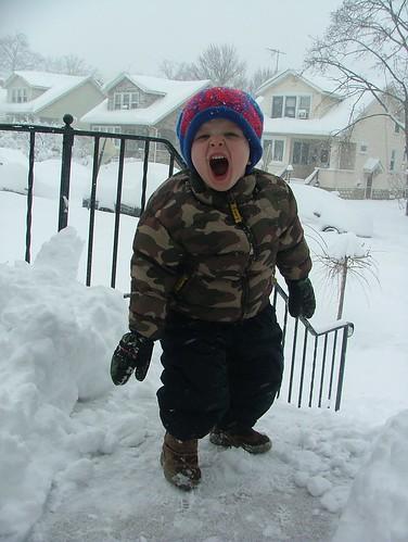 February 2010 snow 039