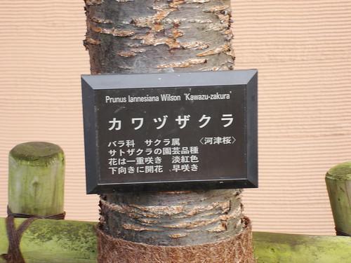 2010-02-18 東京之旅第四天 152