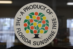 Sunshine Tree Logo (Sam Howzit) Tags: florida dundee roadtrip retro davidsons candyfactory windowsticker highway27 sunshinetree citruscandy citrusgrowers neonfloridahat productofthefloridasunshinetree