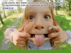 Evrei 03-12 (Palosi Marton) Tags: kids childrens copii crestine versete biblice