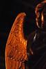 2 - 8 mars 2010 Paris Eglise Saint-Vincent-de-Paul Chaire Détail (melina1965) Tags: wood light sculpture mars paris macro church statue angel march nikon îledefrance lumière ange churches statues angels église sculptures pulpit anges bois 2010 chaire pulpits 75010 églises chaires d80 10èmearrondissement thisphotorocks umbralaward flyingcarpetclub