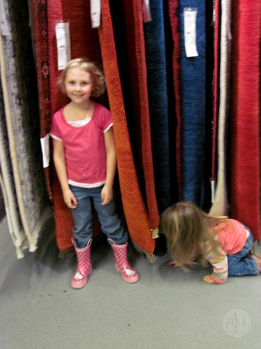 helping with the rug selection