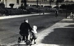Image titled Edward McNaughton, 1950