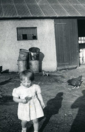 Sandra Gibson in small holding Bartiebeith Road 1960