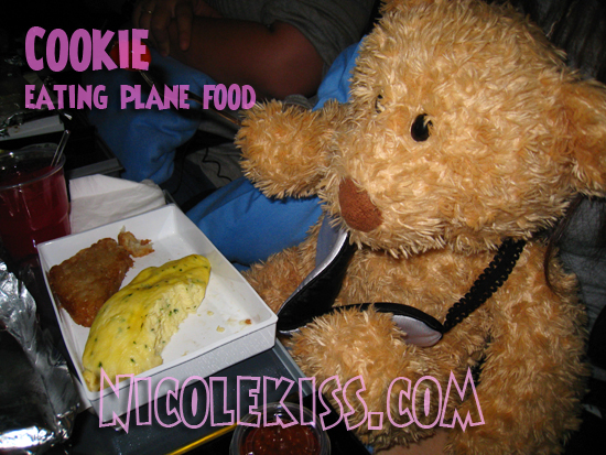 cookie eating plane food