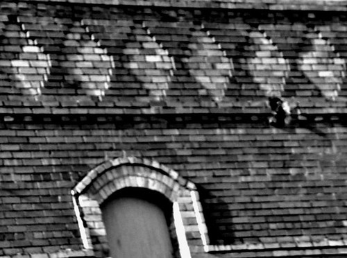 brickblog2.jpg