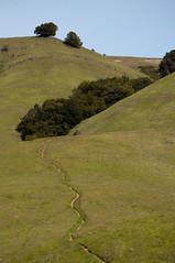 Rolling Hills Photo