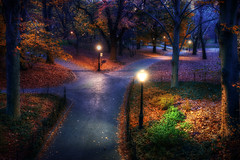 Central Park in the Fall (Stuck in Customs) Tags: world park new york city nyc newyorkcity travel november urban usa ny newyork night digital america garden landscape photography design blog high woods quiet dynamic stuck outdoor dusk landscaping path centralpark manhattan united north central fork landmark historic east trail national processing imaging states lamps northeast range 2009 hdr tutorial trey municipal enchanted travelblog customs ratcliff hdrtutorial stuckincustoms treyratcliff stuckincustomscom