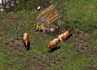 Dairy_Farm_sh