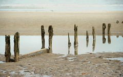 Sea defence groynes (Jez22) Tags: sea copyright beach coast kent worn defence hardwood drift groynes eroded dymchurch longshore