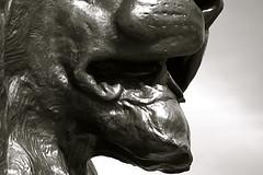 King of Beasts 160410 (andvic) Tags: blackandwhite london bronze trafalgarsquare nelsonscolumn digitalcameraclub project365