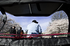 The View from Behind (vk757) Tags: nyc newyork centralpark bluesky cherryblossoms rickshaw viewfrombehind romaticride