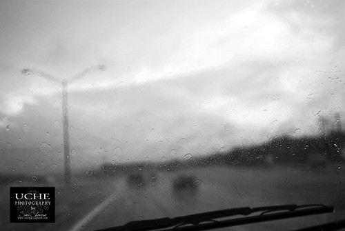 178/365 action rain drops
