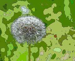 Essence of Wishes (BKHagar *Kim*) Tags: dandelion wishes essence fx athensal bkhagar