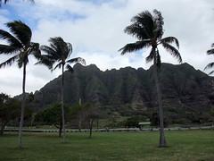 Kualoa Regional Park @ Kaneohe, Oahu ((^_~) [MARK'N MARKUS] (~_^)) Tags: hawaii oahu kaneohe kualoa kualoaregionalpark hnlapr10 hnlapr10mos