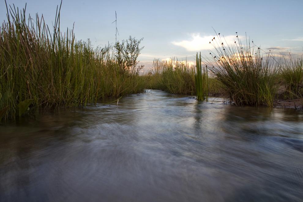 Arroyuelo de aguas cristalinas en una Estancia en Rio verde (Rio Verde, San Pedro, Paraguay - Tetsu Espósito)