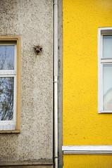 house (Fernando W) Tags: house building berlin window architecture urbanism stadtgetty2010