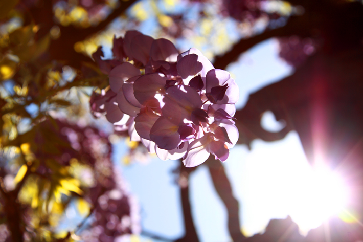 042310_photoPhriday03