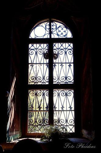 ch_window_zamfira